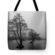 River Trees And Fog Tote Bag