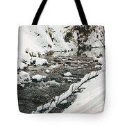 River Vertical Tote Bag