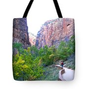 River Walk In Zion Canyon In Zion Np-ut Tote Bag