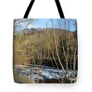 River Waterfall Tote Bag