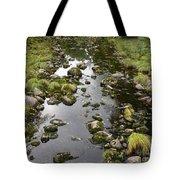 Riverbed  Tote Bag
