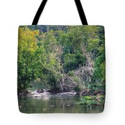 Riverwalk Park Tote Bag