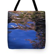Riverwalk Refletion Tote Bag