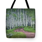 Road Through A Birch Tree Grove Tote Bag