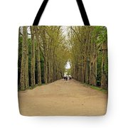 Road To Chenonceau Tote Bag