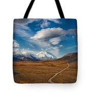 Road To Denali Tote Bag