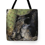 Roadrunners In Nest Tote Bag