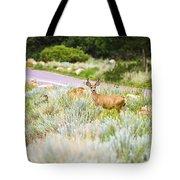 Roadside Buck Tote Bag