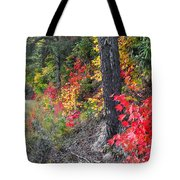 Roadside Fall Colors Tote Bag
