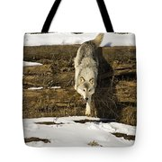Roaming Tote Bag