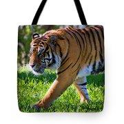 Roaming Tiger Tote Bag