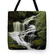 Roaring Creek Falls Tote Bag