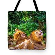 Roaring Lions Tote Bag