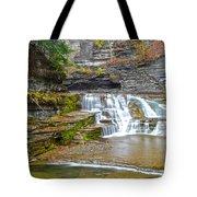 Robert Treman Waterfall Tote Bag