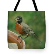 Robin 1 Tote Bag