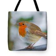 Robin 3 Tote Bag