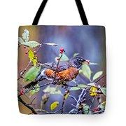 Robin And Berries Tote Bag