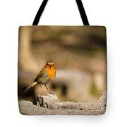 Robin At Feeder Tote Bag