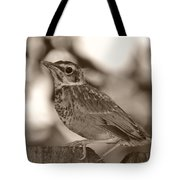 Robin Bird Black And White Tote Bag