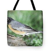 Robin Eating Mealworm Tote Bag