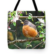 Robin In Apple Tree Tote Bag