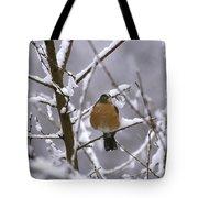 Robin In Snow Tote Bag
