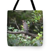 Robin In The Brush Tote Bag
