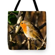 Robin In The Hedgerow Tote Bag