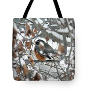 Robin In The Trees Tote Bag