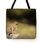 Robin On A Log Tote Bag