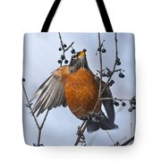 Robin Pictures 84 Tote Bag