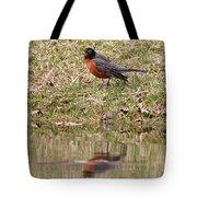 Robin Reflection Tote Bag