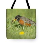 Robin Vs Worm Tote Bag
