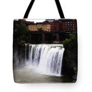 Rochester Ny High Falls Tote Bag