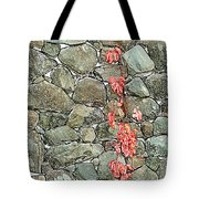 Rock And Ivy Design  Tote Bag