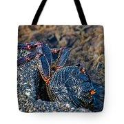 Rock Crab At He'eia Kea Pier Tote Bag