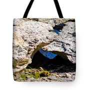 Rock Formation Devonian Fossil Gorge Tote Bag