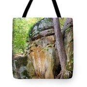 Rock Formation Wildcat Den State Park Tote Bag