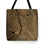 Rock Hydrax   #1087 Tote Bag