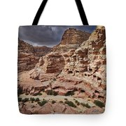rock landscape with simple tombs in Petra Tote Bag