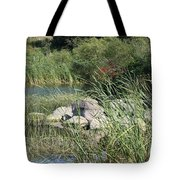 Rock Pile Tote Bag