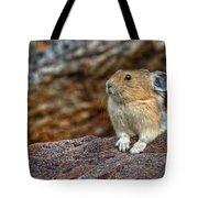 Rock Rabbit Tote Bag