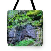 Rock Wall Trail Of The Cedars Glacier National Park Painted Tote Bag