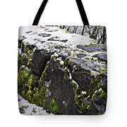 Rock Wall With Moss And A Dusting Of Snow Art Prints Tote Bag
