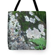 Rock With Moss Tote Bag