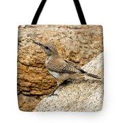 Rock Wren Juvinile Tote Bag