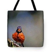 Rockin Robin Tote Bag