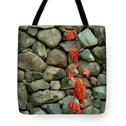 Rocks And Ivy Tote Bag