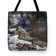 Rocks In Snow Tote Bag