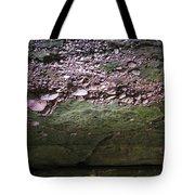 Rocks - Parfreys Glen - Wisconsin Tote Bag